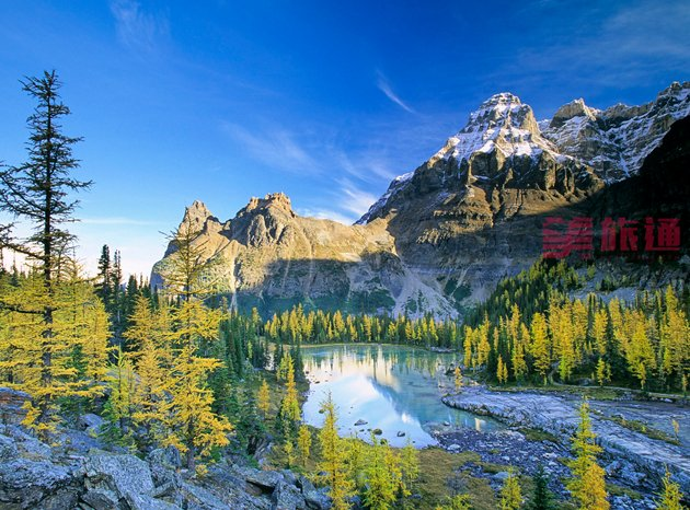 yoho_national_park_and_the_larch_valley.jpg