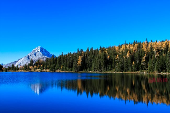 落叶松 chester-lake.jpg