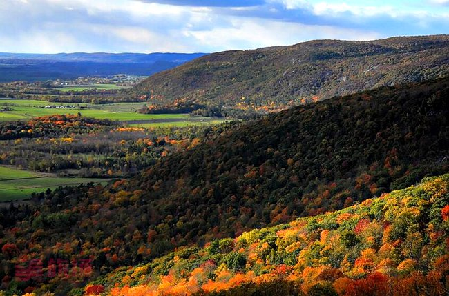 Eardley Escarpment in Fall2.jpg