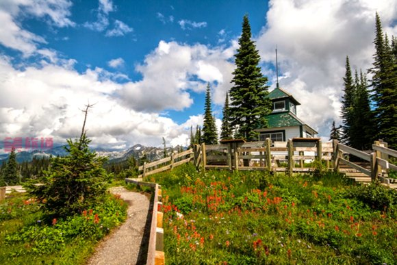 mount-revelstoke-national-park-fire-tower.jpg