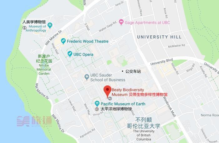 museum location.jpg