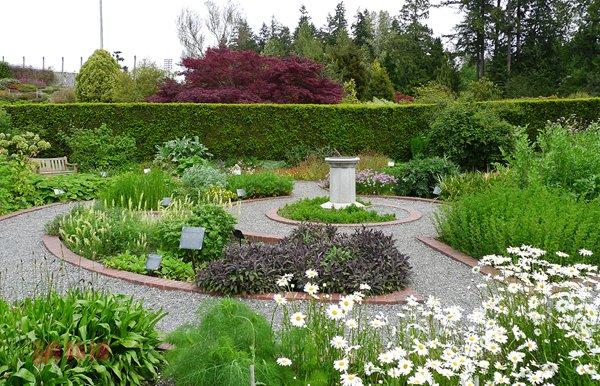 physic-garden.jpg