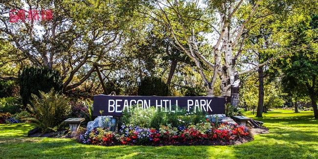 Beacon Hill park.jpg