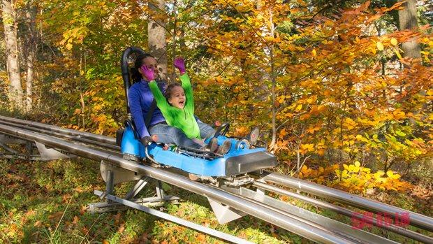 Ridge Runner Mountain Coaster.jpg