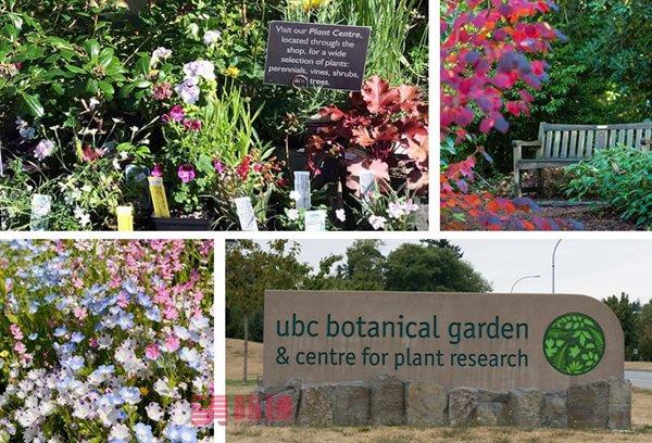 ubc-botanicalgarden.jpg