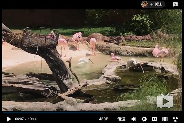 01 zoo.jpg