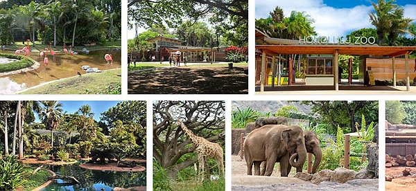 Honolulu Zoo.jpg