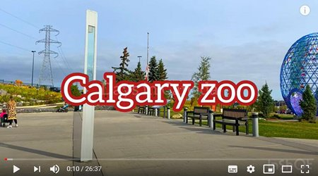 Vlog-zoo.jpg